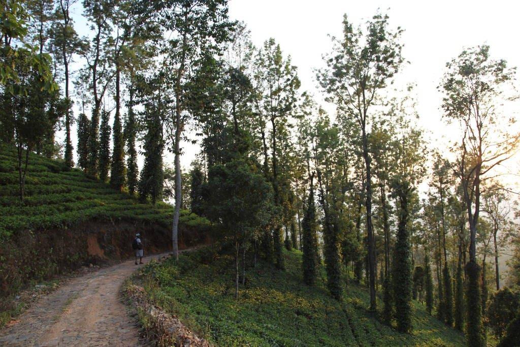 Road to Meditation