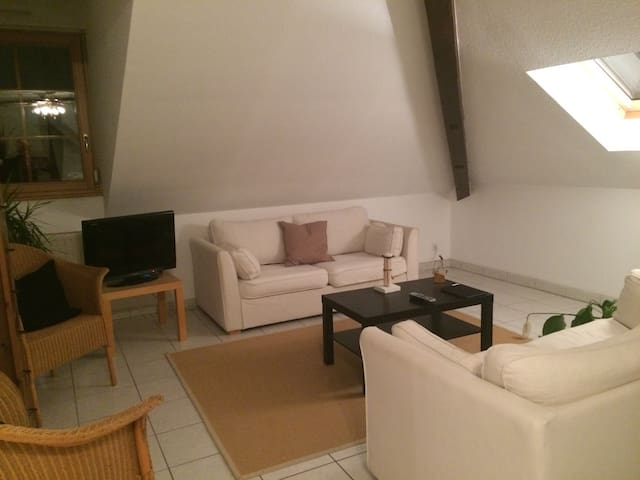 Apartment 5 min from Basel - Hégenheim