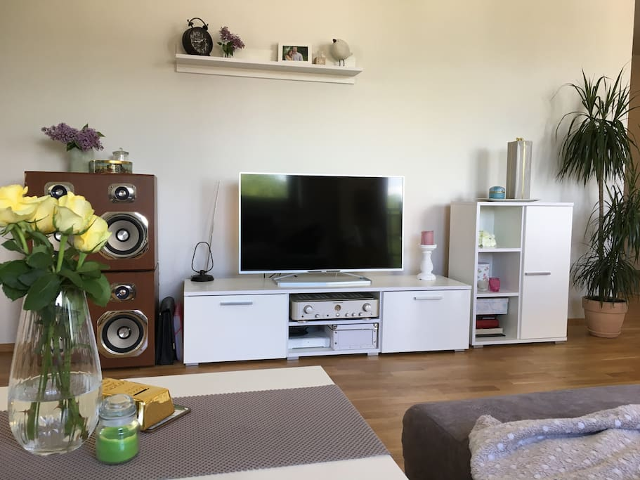 TV, WiFi, sound system