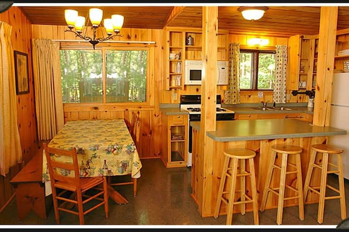 Norway Pines 2 - 4 Person Special With Fireplace