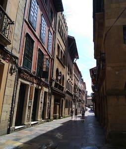 Ferrería Casco Historico