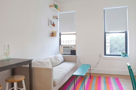 Charming 1BR Perfect for Couples or Solo Traveller - New York - Apartment
