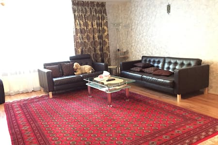 Charismatic apartment with garden, near the centre - Amsterdam - Stadswoning