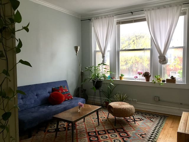 A cozy room for solo travelers | Mins to the Loop