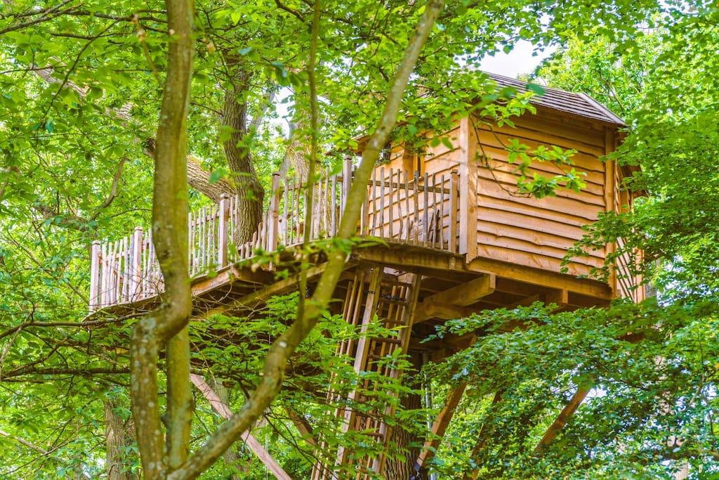 Cabane accessible par une échelle