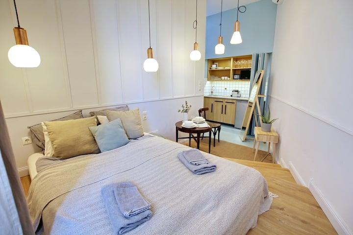 Budapest Eye Apartment | Ozone cleaning | AC