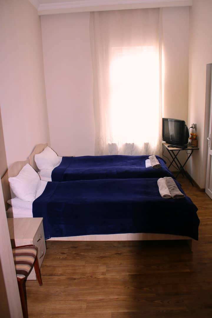 """Twin room #1 ,,Sanapiro"""""""