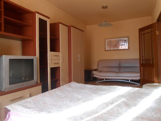Уютная квартира в центре города - Nowosybirsk - Apartament