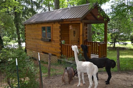 Log Cabin Tiny House - Arden