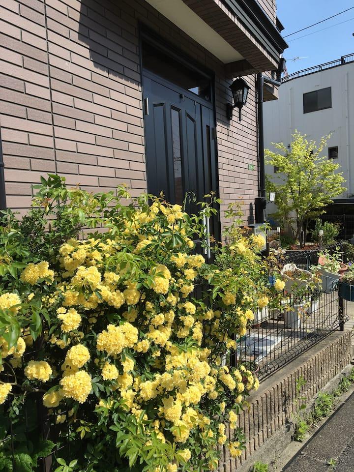 交通便利。梅田から電車で15分、上新庄駅から徒歩3分。一人旅に最適!(C)