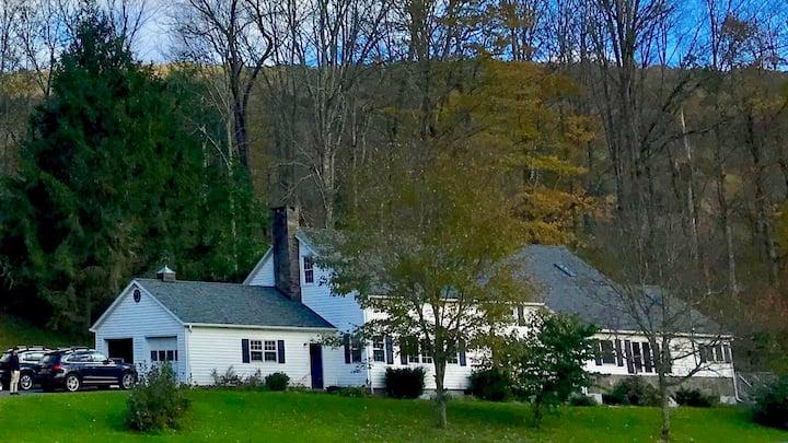 Huge Catskills retreat w/ fireplace lodge room