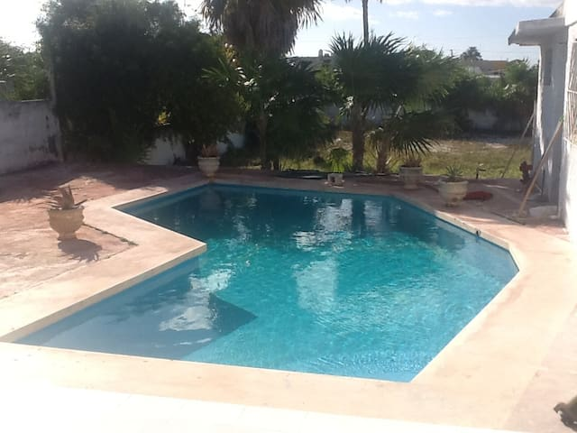Luisa & Dave's Poolside Casa w/Nature Tours - Progreso