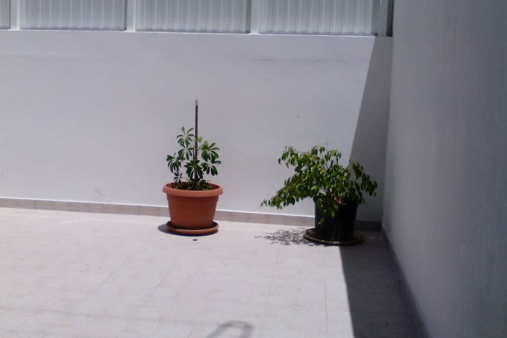 Terrace at your disposal