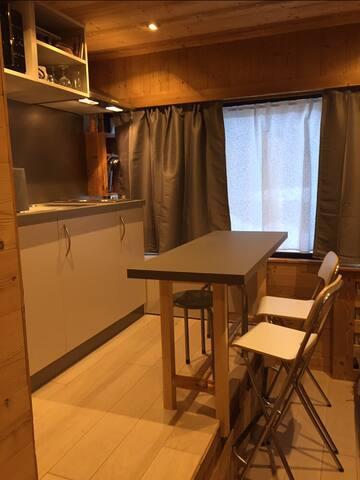 Petit Studio cosy 15 m2 tout équipé ski au pied !