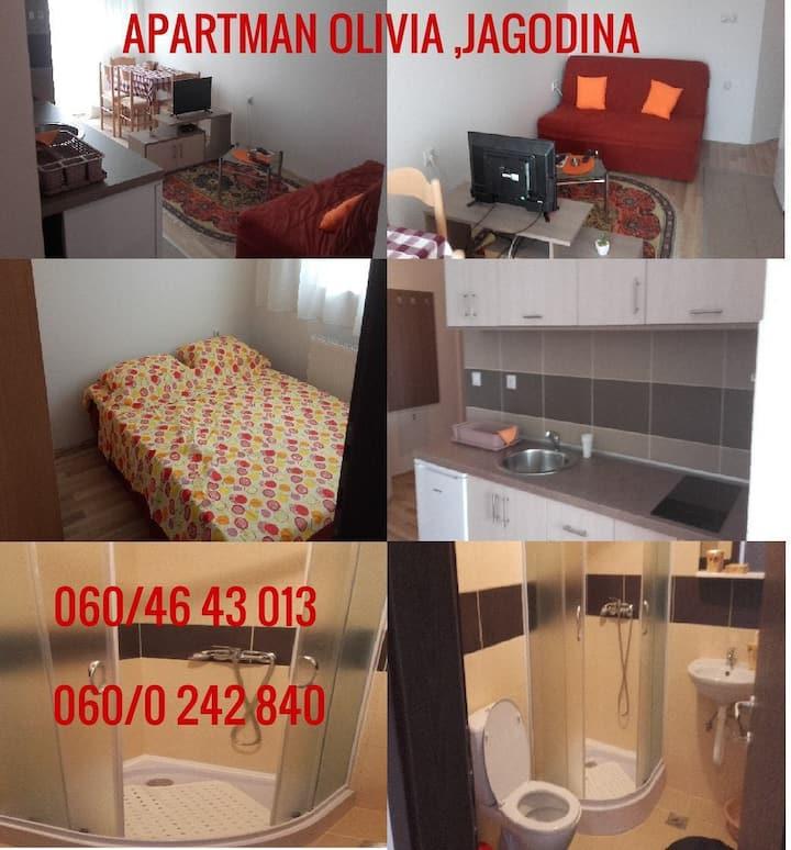 Jagodina Apartment OLIVIA