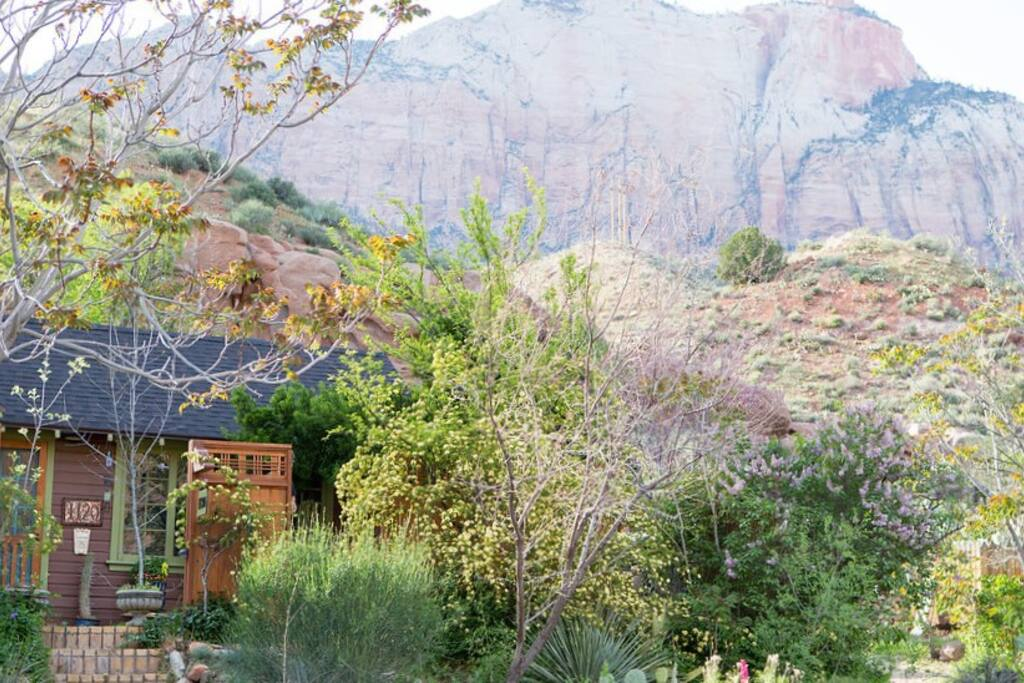 Rose Cottage with Zion in the background