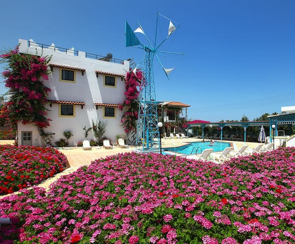 Pool area is surrounded by colorful flowers giving you a sense of relaxation.