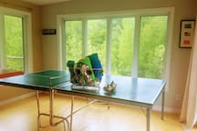Ping Pong Table and beach towels.