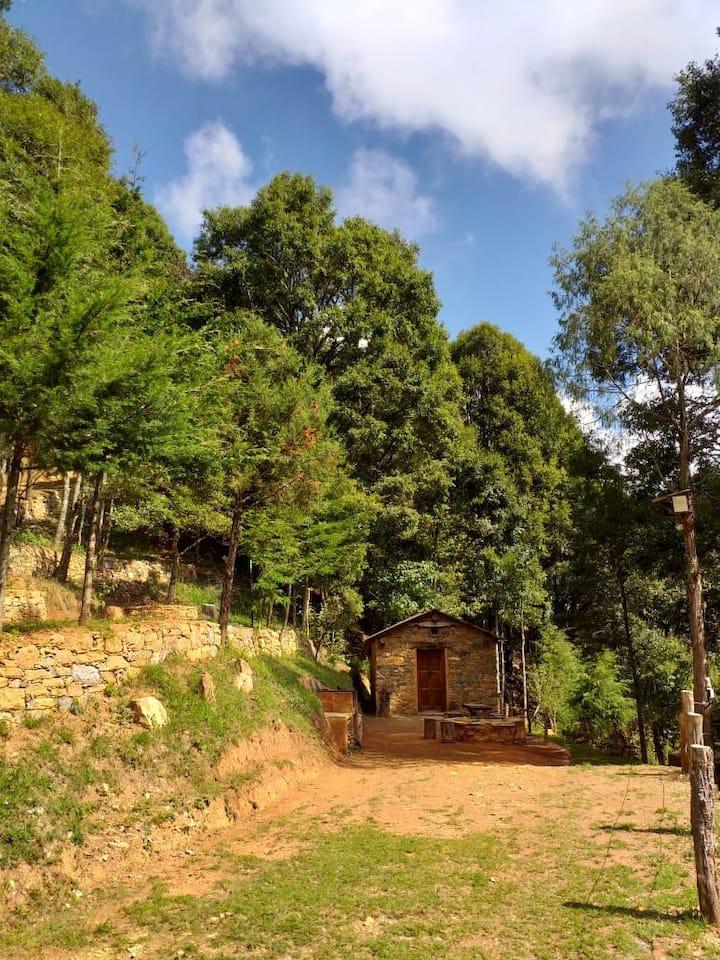 Cabaña Cantó del Jilguero/El Bosque de las Ranas