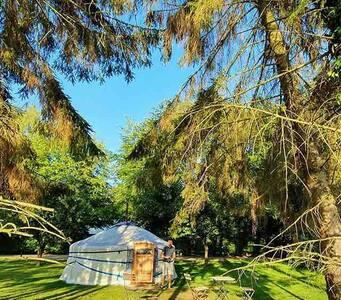 Yurt in de wei bij gezellige woonboerderij