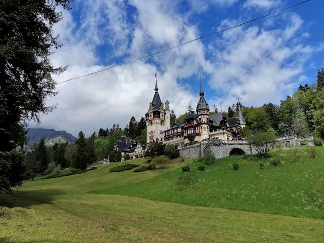 You can visit Peles Castle - not far from here