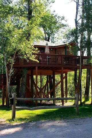 Hummingbird Treehouse #7  Gallatin River Hideaway
