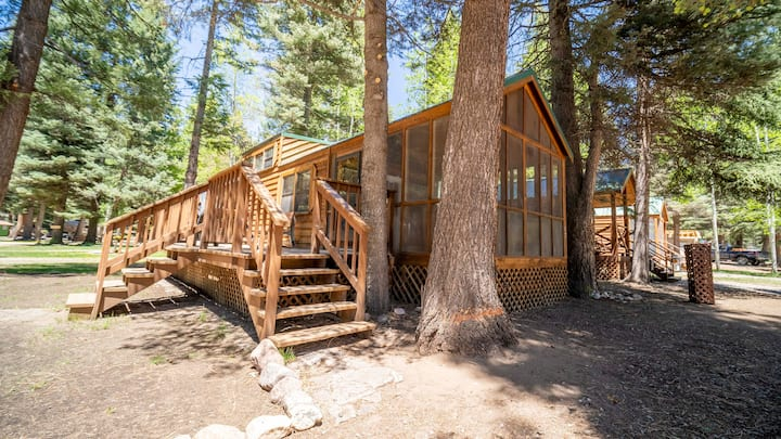 The Cottonwood Cabin #17