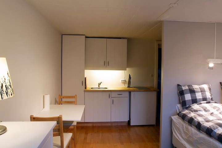Room with a kitchen and a private bathroom