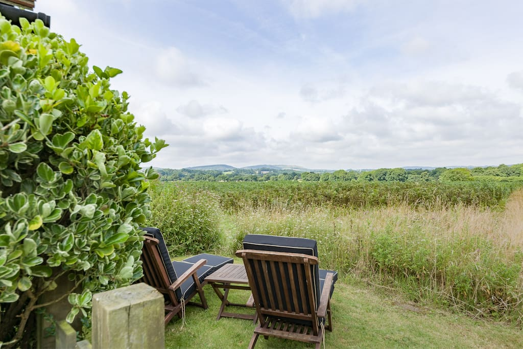 Enjoy the view of Butser Hill and the South Downs