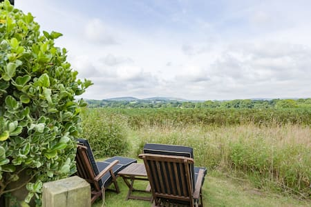 Charming cabin in South Downs - West Harting - Kabin