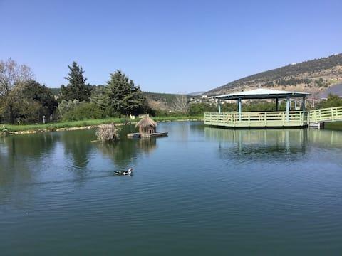 'Moran Caravan' Cozy, quiet place in the Galilee