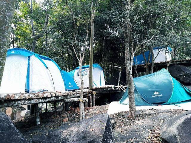 Green adventure Tent stay and Trekking ,Wayanad