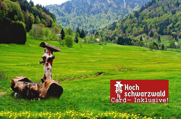 Black-Forest-Fewo B3, Pool +100 attractions free