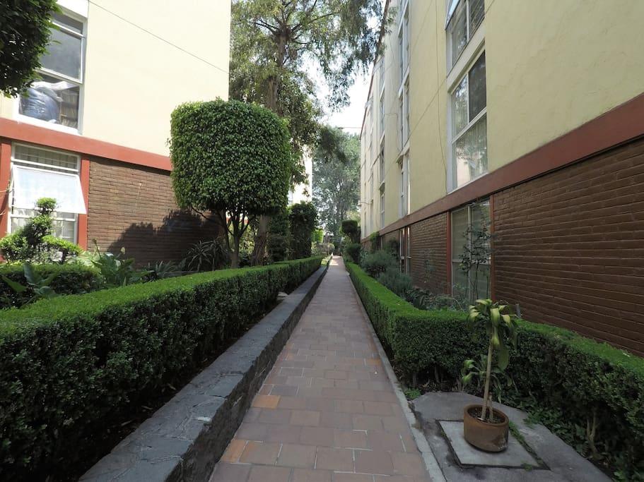 Unidad habitacional con áreas verdes