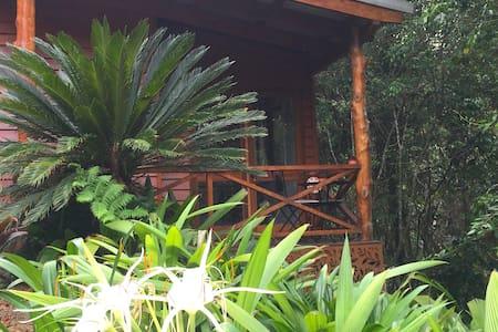 Casa Kuranda en la foresta!