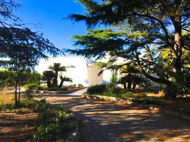 Villa FATA