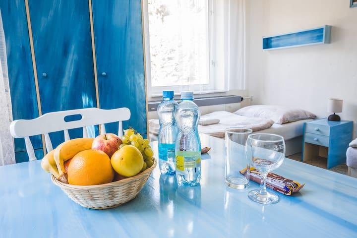 Blue room / Boutique nature hotel Na Potůčníku