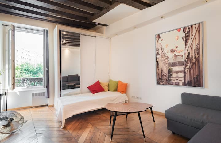 Sweet and cosy flat rue Montorgueil