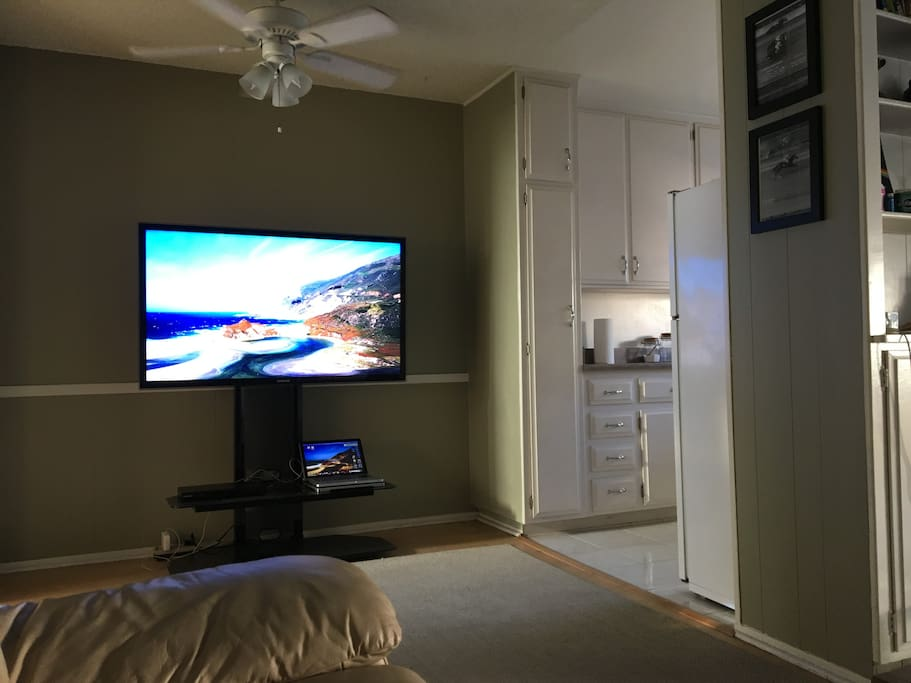 """View from couch. 55"""" Samsung LED with hookup to laptop, DVD player, and Netflix."""