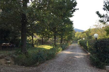 Appartamento Tra Campagna e Città - Lucca