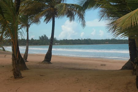 Vacation-Ready Place Near the Beach & Rainforest - Río Grande - Apartmen
