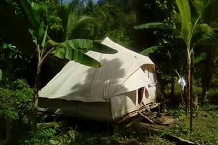 Marclarkin - a real Caribbean Wild Life experience - Castle Bruce