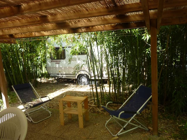 Comfortable camping in a green and large garden - Lido di Camaiore
