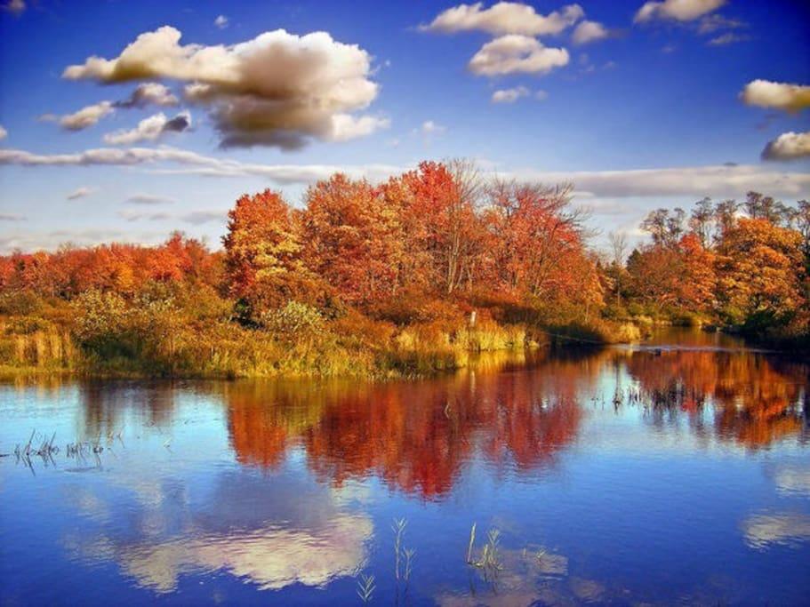 Wild Acres Lake