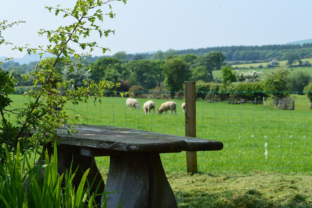 The garden view and large oak picnic table.