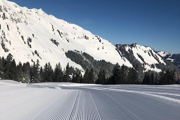 Appartement skis aux pieds aux Portes du Soleil