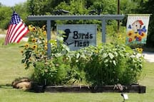 Byrd's, Birds, Bees, Flowers, Trees & lots of farm animals!