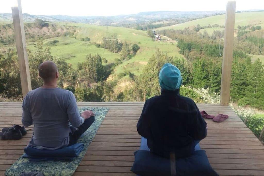 Vista desde el living hacia la terraza