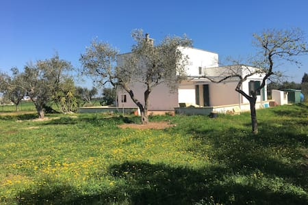 VACANZA  tutto l'anno nel SALENTO fra sagre e cibo - Province of Lecce - 別荘