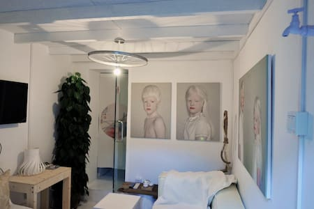 Whitescape Hutong Courtyard - 胡同保护区 四合院– Loft - Beijing - House